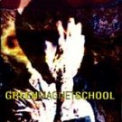 Green Magnet School CD FREE S&H~ $9.99 ~ SUB POP NOISE Blood Music a la Sonic Youth