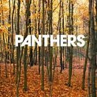 FREE S&H ~ $9.99 ~ Panthers CD Things are Strange VICE RECORDS