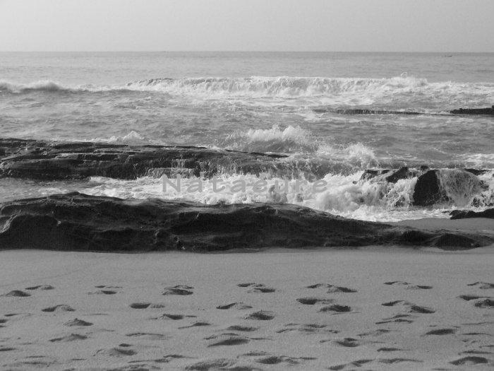 Footprints on Elmina Coast 11x14