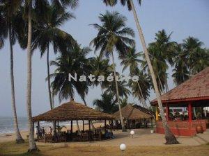 Beach Restaurant-Coconut Grove 16x20