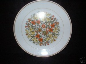 Corelle Corning Ware Indian Summer Dinner Plates x 4