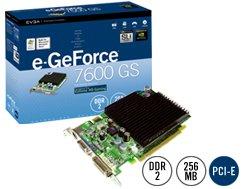 e-GeForce 7600GS 256MB w/ Fan