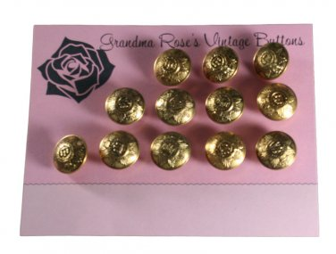 Grandma Rose's Vintage Buttons - 12 Pressed Steel Devonshire Regiment Reproduction 3/4 Inches