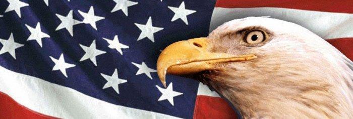 AMERICAN FLAG & EAGLE