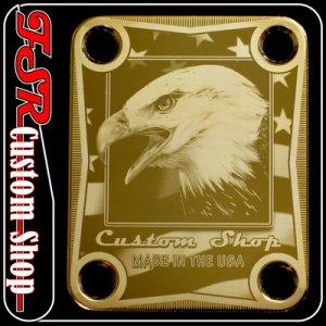 (G0016) GOLD EAGLE/USA FLAG NECK PLATE fits fender stratocaster