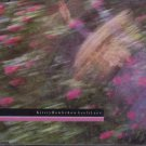 Kirsty Hawkshaw - Leafy Lane - UK  CD Single