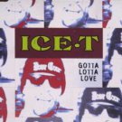Ice-T - Gotta Lotta Love - UK CD Single