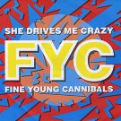 "Fine Young Cannibals - She Drives Me Crazy - UK   12"" Single - LONX199 ex/ex"
