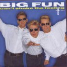 "Big Fun - Can't Shake The Feeling - UK 7"" Single - JIVE234 ex/m"