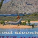 Wout Steenhuis - Blue Hawaii - UK Vinyl LP ex/ex