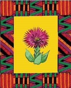 African Flower-8 box set
