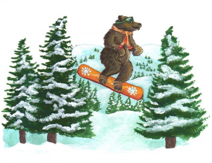 Bear Snowboarding - 8 box set