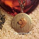 Golden Retriever Photo Locket Necklace Chesapeake Bay Retriever ...Jewelry for Dog Lovers