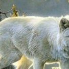 White Wolve Stands Alone