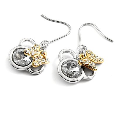 24563-alloy with stone earring