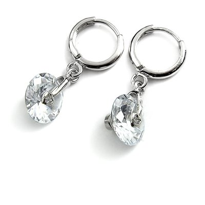 24782-alloy with stone earring