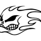 No Fear Flames Skull Vinyl Auto Car Truck Window Decal Sticker #sku-019