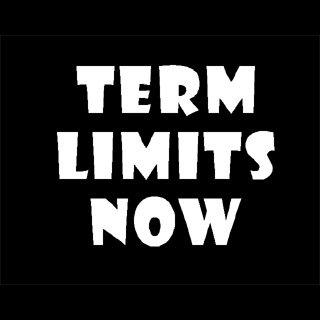 "6"" Term Limits Now Vinyl Decal Window Sticker"
