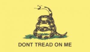 Gadsden Dont Tread on Me Historic American flag 3 x 5' THE Flag Company