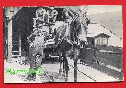 Vintage Real Photo Postcard RPPC - PA Pennsylvania coalminers & horse pulling coal cart 943