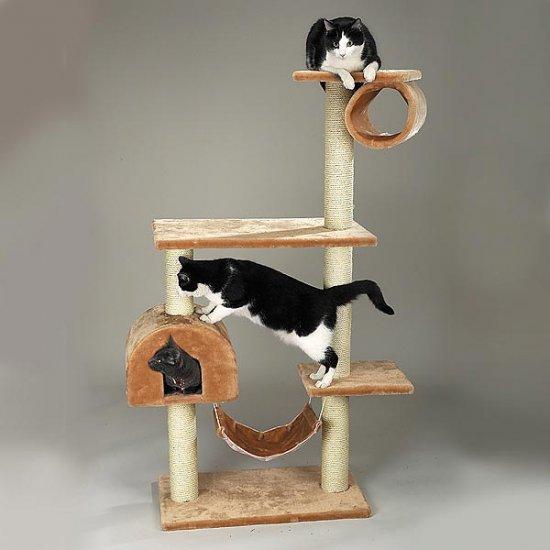 Four story BB Kitten BEIGE Tumbler