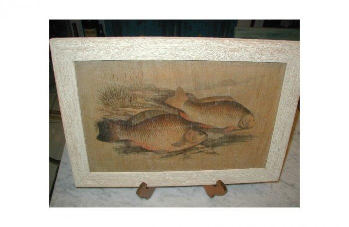 Oriental Fauna KOI Fish ~ Framed Art Image Wood Asian
