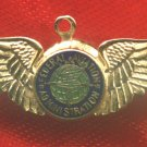 FAA - FEDERAL AVIATION ADMINISTRATION - PILOT WINGS PIN