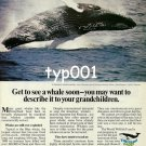 WORLD WILDLIFE FUND - 1979 - GO TO SEE A WHALE SOON PRINT AD