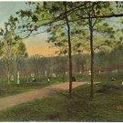 Culp's Hill, Gettysburg, PA c1910s