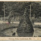 Narrows Park, Cumberland, MD c1907 Postcard
