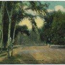 Forest Park, St. Louis, MO c1912 Postcard