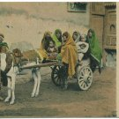Charette egyptienne, Le Caire Postcard