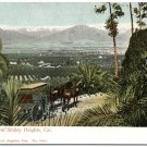Redlands from Smiley Heights, CA pre-1907 Postcard
