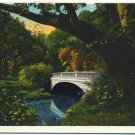 Unnamed Scene, vic. of Louisville, KY c1930s Postcard
