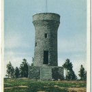 Roosevelt Monument, Black Hills, SD Postcard