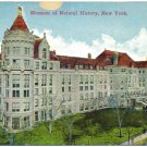 Museum of Natural History, New York c1910s Postcard