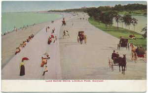 Lake Shore Drive, Lincoln Park, Chicago c1910s Postcard