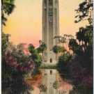 The Singing Tower, Florida Hand-Colored Postcard