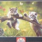 Educa KITTYLAND 500 pc New Jigsaw Puzzle Kittens