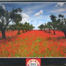 Educa POPPY FIELD New 1000 pc Jigsaw Puzzle