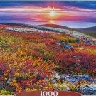 Castorland NORTHERN PALETTE 1000 pc Jigsaw Puzzle Mountain Autumn Landscape