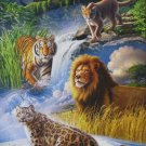 Castorland BIG CATS 1000 pc Jigsaw Puzzle New Leopard Tiger Panther Lion Puma New