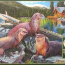 Cobble Hill RIVER OTTERS 1000 pc Jigsaw Puzzle Animals New