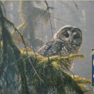 Cobble Hill MOSSY BRANCHES SPOTTED OWL 500 pc Jigsaw Puzzle Robert Bateman New