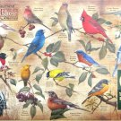 Cobble Hill Popular Backyard Birds Of North America 1000 pc Jigsaw Puzzle Catherine McClung