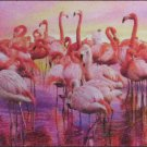 Clemontoni Flamingo Dance 1000 pc Panorama Jigsaw Puzzle Sunset