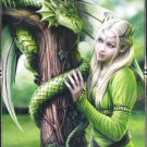 Clemontoni Anne Stokes Kindred Spirits 1000 pc Jigsaw Puzzle Fantasy Dragon