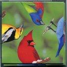 B Dazzle North American Birds Scramble Squares Brain Twister Puzzle