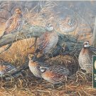 Cobble Hill Quail 1000 pc Jigsaw Puzzle Rosemary Millette Art Birds Animals Pheasants
