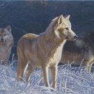 Cobble Hill White Gold Wolves 500 pc Jigsaw Puzzle Daniel Smith Art